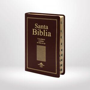 Biblia Reina Valera 1960 Letra grande, palabras de Jesús resaltadas - tapa imitación piel