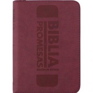 Biblia de Promesas RVR1960